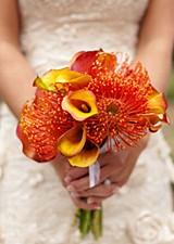 Furnishing for wedding agencies